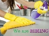 Permanent Cleaner Required